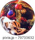 透過性PNG写真 クリスマス素材 Web素材 クリスタルボール 球 70733632
