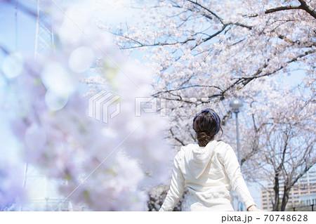 桜を見る女性  70748628