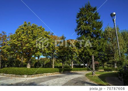 信州 長野県中野市秋の一本木公園の古い東屋 70787608