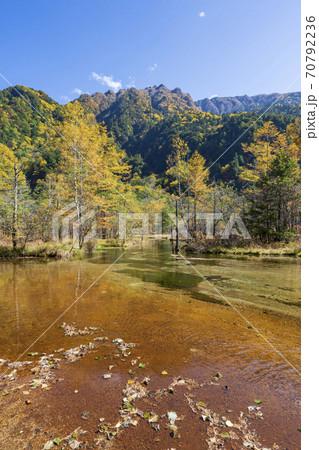 《長野県》秋の上高地 田代湿原と田代池 70792236