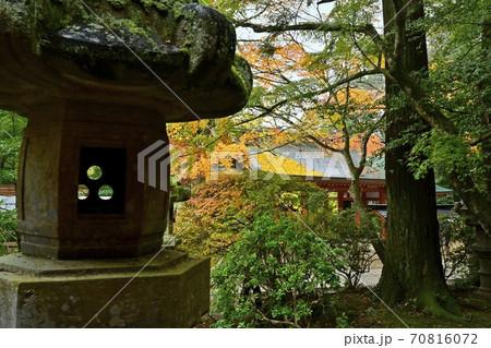 香取神宮の石灯篭と総門に紅葉する木々 70816072
