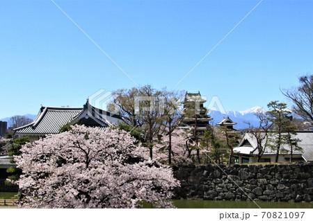 松本市役所から眺める松本城天守と北アルプス 70821097