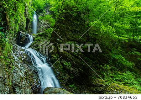 ダイナミックな滝 竜化の滝 70834665