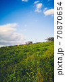 子供のころ見た風景、夏休みの青空のもと河川敷に広がる一面の緑で虫取りする少年 70870654