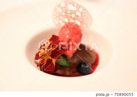 美味しいチョコムースと木苺のシャーベット 70890055