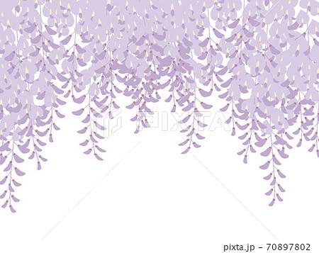 藤の花の背景_和風イラスト_藤棚 70897802