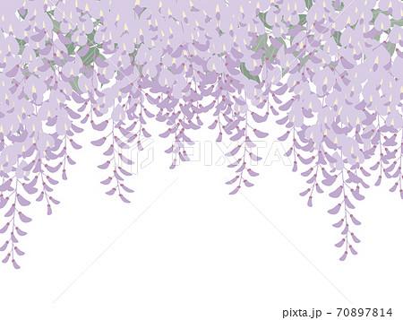 藤の花の背景_和風イラスト_藤棚_葉あり 70897814