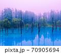 早朝の「青の池」です。 70905694