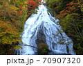 奥日光三名瀑 絶景 湯滝観爆台からの紅葉 70907320