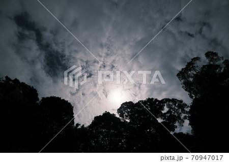 森のシルエットの奥で姿を隠す太陽 70947017