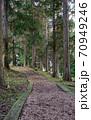 バークチップの杉の小道 70949246