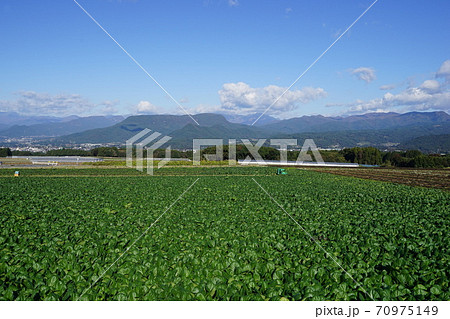 10月 昭和村09谷川岳・三峰山と高原野菜畑 70975149