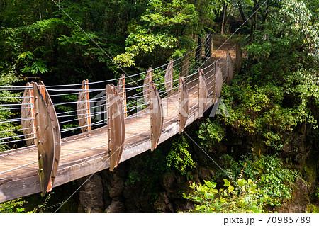 木で作られた吊り橋 木製の小さな橋 70985789