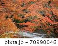 養老渓谷の紅葉の風景 70990046