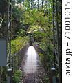 細い吊り橋の道所橋/奥多摩むかし道(東京都) 71001015