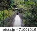 細い吊り橋の道所橋/奥多摩むかし道(東京都) 71001016
