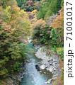 道所橋から見た多摩川と紅葉/奥多摩むかし道(東京都) 71001017