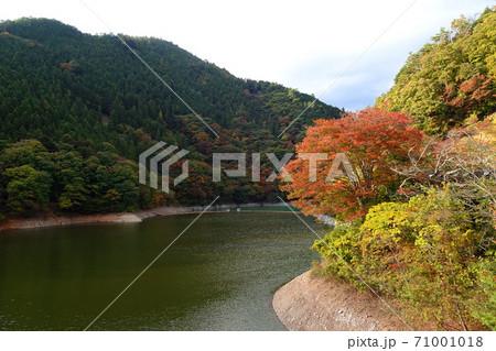 奥多摩湖(小河内貯水池)と紅葉/東京都 71001018