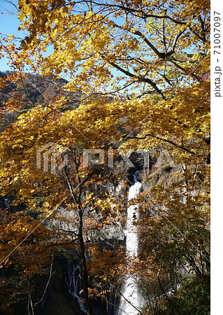 青空を背景にした奥日光、紅葉の華厳の滝の黄色い風景 71007097