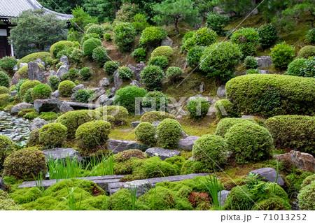 京都・東福寺の開山堂で見た、新緑が広がる初夏の日本庭園 71013252