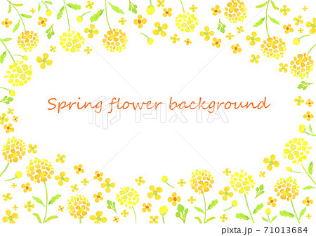 菜の花のフレーム  71013684