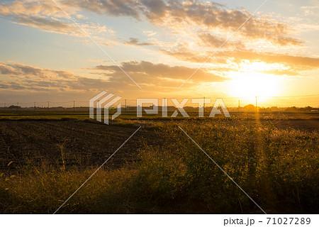 村の田畑と草木を照らす日の入り前の太陽と広大な夕方の空 71027289