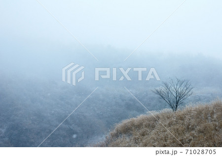 九州の熊本県阿蘇市にある冬の阿蘇山に雪が降っている雪山の風景 71028705