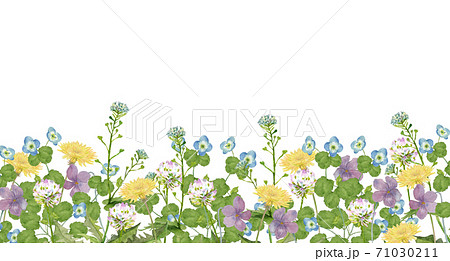 早春の野原 水彩イラスト 71030211