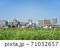 堺市浅香山付近の大和川堤防からあべのハルカス方向の都市風景 71032657