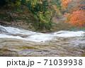 養老渓谷の滝と紅葉 71039938