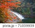 養老渓谷の滝と紅葉 71039939