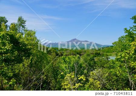 黒川地区から見るニセコアンヌプリ 71043811