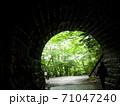 トンネルの向こう側に見える青々とした木々 71047240