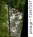 山の中の森から見える急流の川 71047247