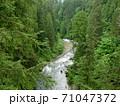 森の中を流れる急流の川 71047372