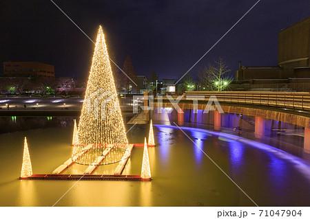 富山_冬の環水公園夜景 71047904