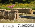 稲木とおどしの猛禽風カイト 71062258
