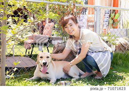 犬の世話をする女性 71071623