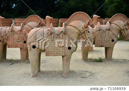 高槻市 今城塚古墳の馬形埴輪 71108939