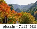 紅葉 大滝大川県立自然公園(香川県高松市) 71124988