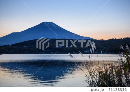 秋深まる夕空に佇む富士山と山中湖畔のススキの光景 71128356