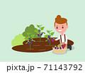 Young Gardener harvesting purple eggplant. 71143792