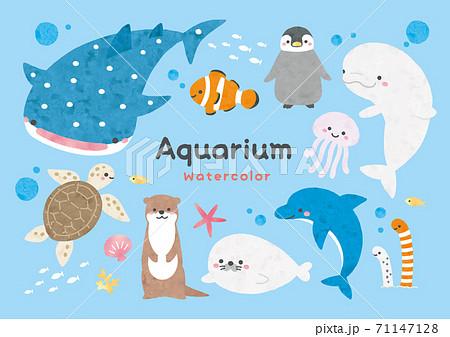 水族館のかわいいキャラクター水彩 71147128