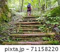 森林浴トレッキングをする40代女性の後 71158220