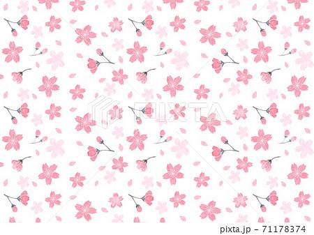 水彩で描いた桜の背景イラスト 71178374