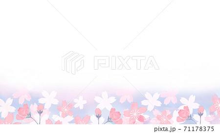 水彩で描いた桜の背景イラスト 71178375
