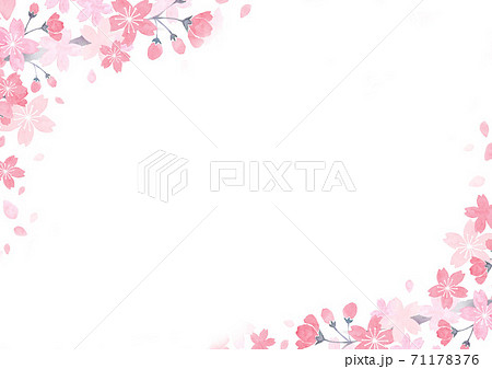 水彩で描いた桜の背景イラスト 71178376