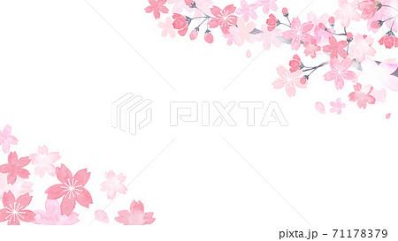 水彩で描いた桜の背景イラスト 71178379
