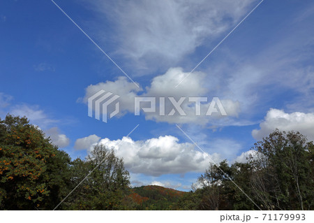 白い雲が浮かぶ秋の空 福島県只見町 71179993