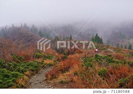 霧のかかる紅葉の武奈ヶ岳の稜線を歩く登山者 71180588